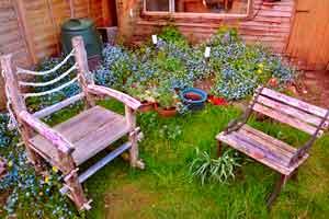 Rasen Garten